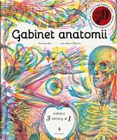 Gabinet anatomii - wiek 9+