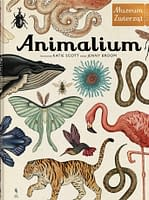Animalium - wiek 7+